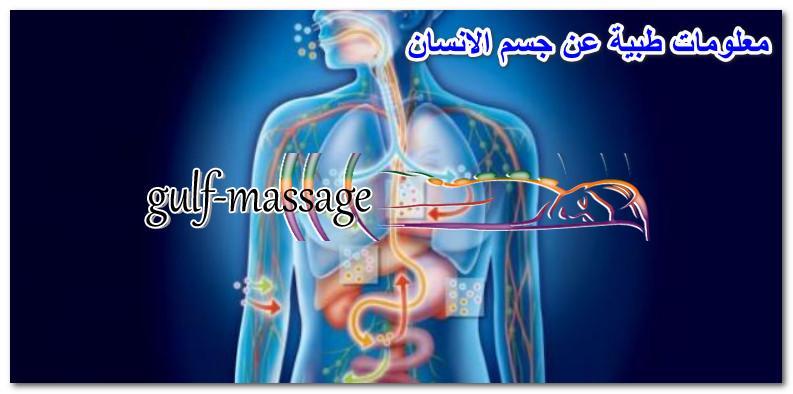 معلومات طبية عن جسم الانسان مركز مساج معلومات مخيفة عن الانسان